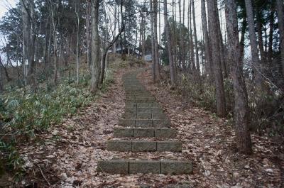 soku_25428.jpg :: 神社 山道