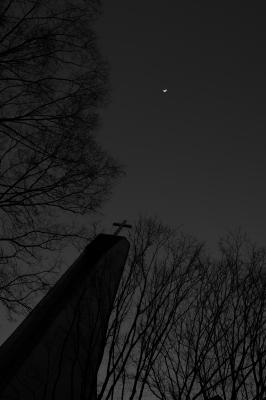 soku_25525.jpg :: AF.S NIKKOR 14.24mm f/2.8G ED 表参道 並木 月 建築 建造物 教会 モノクロ