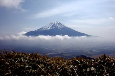 soku_25614.jpg :: 風景 自然 山 富士山
