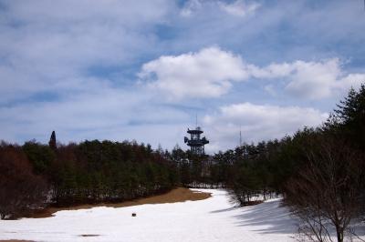 soku_25804.jpg :: 風景 テレビ塔
