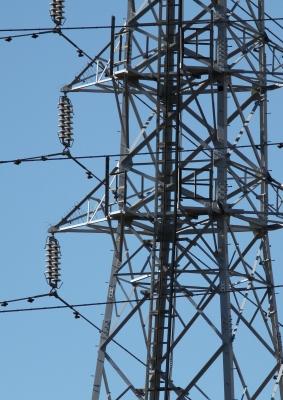 soku_26067.jpg :: 動物 野鳥 ハヤブサ 建築 建造物 塔 鉄塔 電線