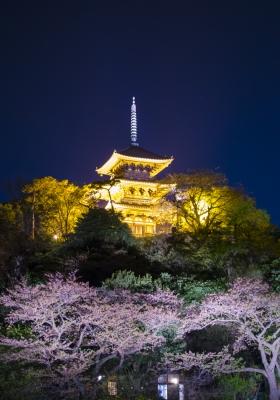 soku_26119.jpg :: 建築 建造物 五重塔 夜景 ライトアップ