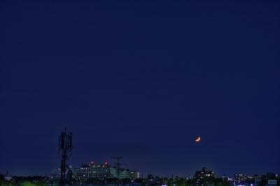 soku_26232.jpg :: 風景 自然 月 三日月 空 夜空