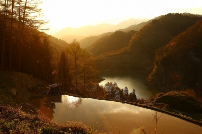 soku_26578.jpg :: 風景 自然 田畑 水田 棚田 空 夕日 夕焼け 日没