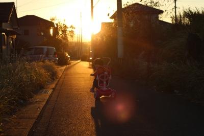 soku_26661.jpg :: 風景 自然 空 夕日 夕焼け 日没