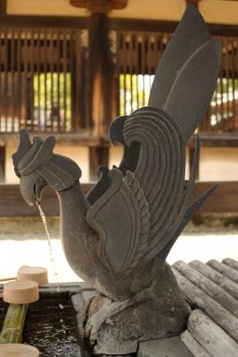 soku_26792.jpg :: 建築 建造物 神社 手水所