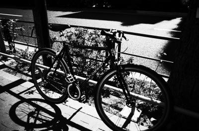 soku_27038.jpg :: 乗り物 交通 その他の乗り物 自転車 モノクロ