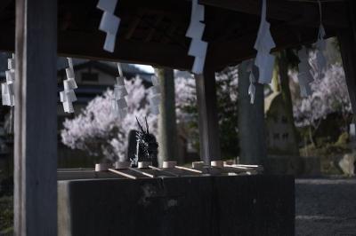 soku_27323.jpg :: 神社仏閣 お清め