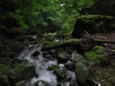 soku_27609.jpg :: PowerShotG15 風景 自然 水分 コンデジ埼玉 lock