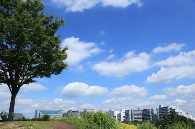 soku_27638.jpg :: 風景 街並み 郊外の風景