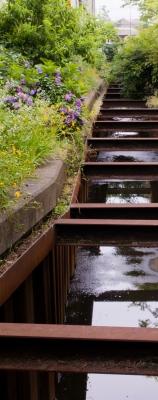soku_27828.jpg :: 川 暗渠 放水路