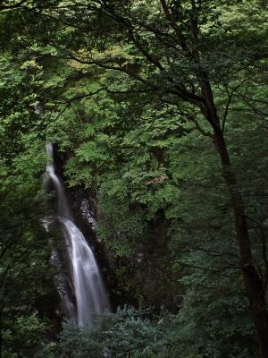 soku_27893.jpg :: PowerShotG15 風景 自然 水分 コンデジ埼玉 lock 滝 小中大滝 ワイコン ソフトウェアHDR