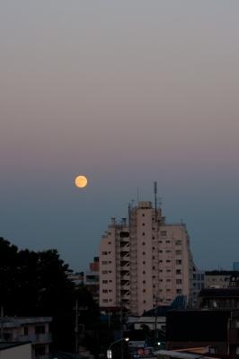 soku_28574.jpg :: 風景 自然 天体 月 中秋の名月