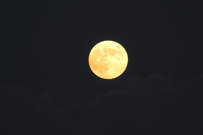 soku_28590.jpg :: 風景 自然 天体 月 中秋の名月