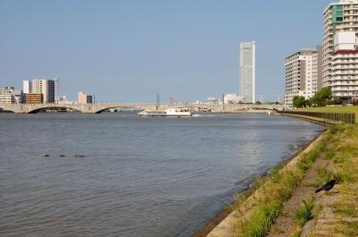 soku_28624.jpg :: 乗り物 交通 船 ボート 水上バス 晴海