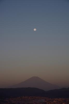 soku_28636.jpg :: 風景 自然 山 富士山 月