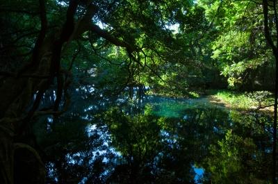 soku_28657.jpg :: 風景 自然 湖