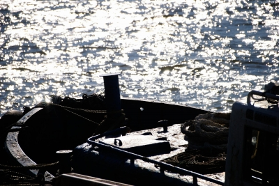 soku_28717.jpg :: 乗り物 交通 船 ボート 逆光