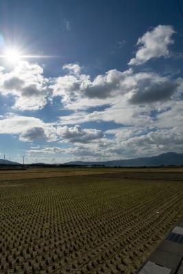 soku_28851.jpg :: 風景 自然 田畑 田んぼ