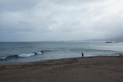 soku_28866.jpg :: 風景 自然 海 砂浜