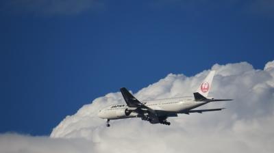 soku_28871.jpg :: 風景 自然 空 飛行機雲