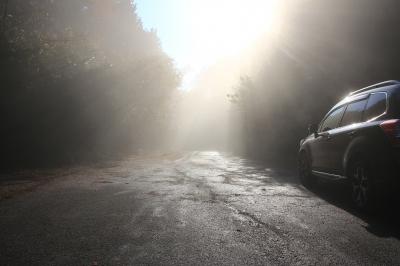 soku_29197.jpg :: 風景 自然 道路 逆光