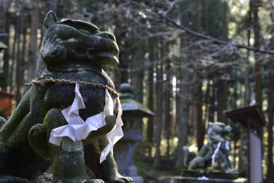 soku_29250.jpg :: 風景 建築 建造物 神社 狛犬
