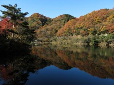 soku_29352.jpg :: PowerShotG15 風景 自然 水分 コンデジ埼玉 lock 湖 間瀬湖 紅葉 黄色い紅葉