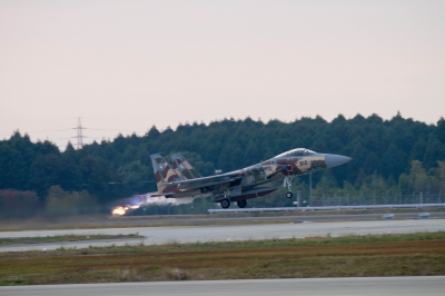 soku_29380.jpg :: 乗り物 交通 航空機 飛行機 軍用機 戦闘機 F-15DJ 記念塗装