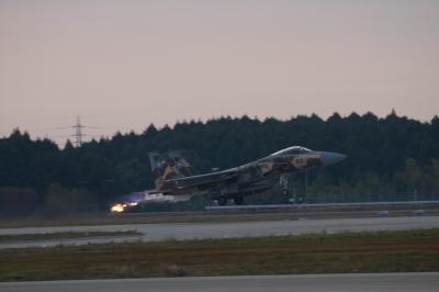 soku_29381.jpg :: 乗り物 交通 航空機 飛行機 軍用機 戦闘機 F-15DJ 記念塗装