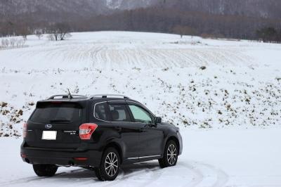 soku_29483.jpg :: 風景 自然 雪景色 ドライブ 車 4WD