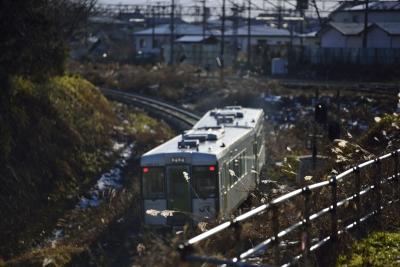 soku_29496.jpg :: 乗り物 交通 鉄道 電車 二両編成 ススキ