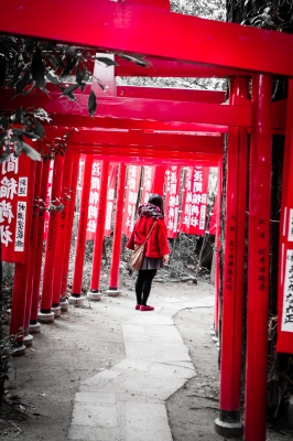 soku_29573.jpg :: 神社 人物 女性 若い女性 鳥居 建築
