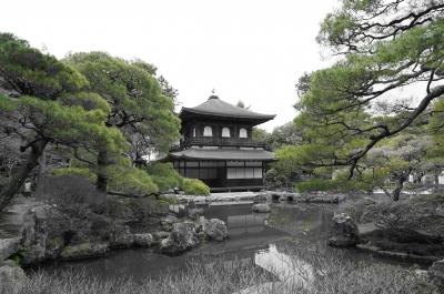 soku_29586.jpg :: 建築 建造物 寺院 銀閣寺