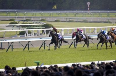 soku_29625.jpg :: 運動 スポーツ 競馬 馬