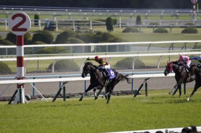 soku_29626.jpg :: 運動 スポーツ 競馬 馬