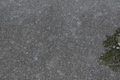 soku_29788.jpg :: 風景 自然 雪