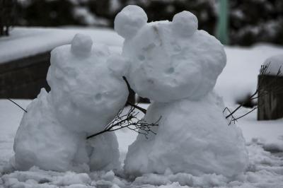 soku_29790.jpg :: 雪だるま 風景 雪