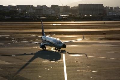 soku_29842.jpg :: ジェット機 伊丹空港 夕日
