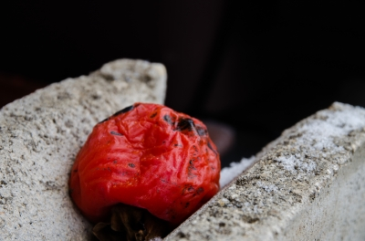 soku_29872.jpg :: 干し柿