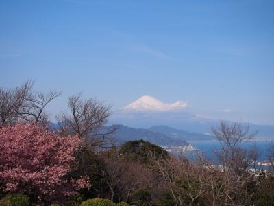 soku_30070.jpg :: 風景 自然 山 富士山