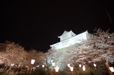 soku_30286.jpg :: 植物 花 桜 サクラ 夜桜 満開 建築 建造物 城 津山城