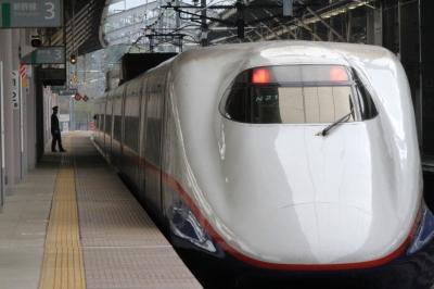 soku_30669.jpg :: 乗り物 交通 鉄道 新幹線 E2系 あさま516号
