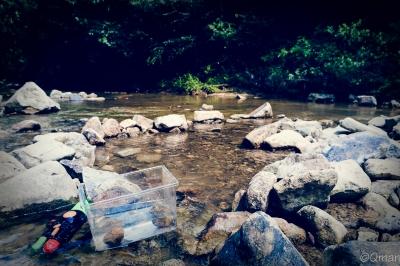 soku_30768.jpg :: 夏 川 自然 風景 水遊び