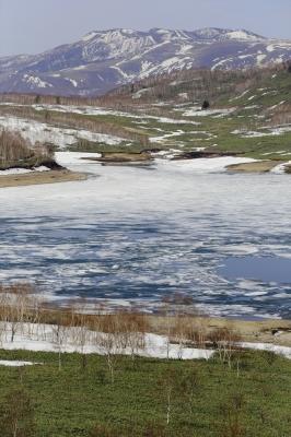 soku_30932.jpg :: 風景 自然 川 雪解け 山 雪