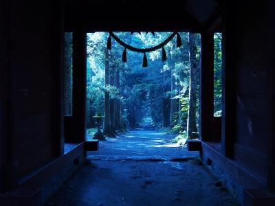 soku_31126.jpg :: 風景 自然 建築 建造物 神社 参道