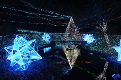 soku_31205.jpg :: 相模湖イルミリオン 色 光 イルミネーション