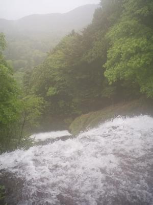 soku_31237.jpg :: 風景 自然 滝 湯滝