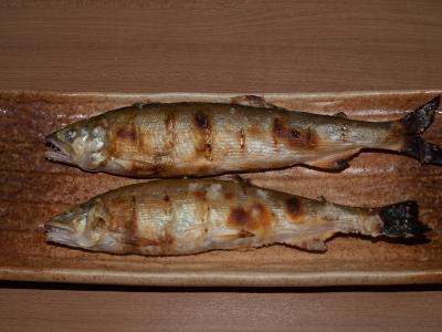 soku_31430.jpg :: 食べ物 和食 焼魚 鮎