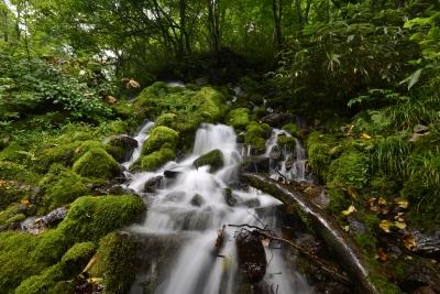 soku_31466.jpg :: 風景 自然 滝